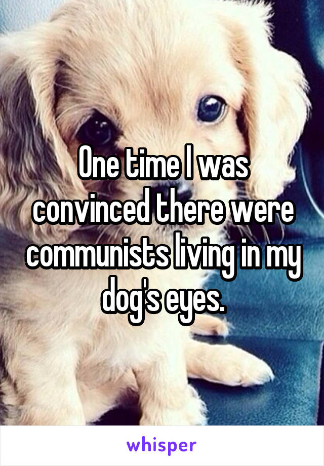 One time I was convinced there were communists living in my dog's eyes.