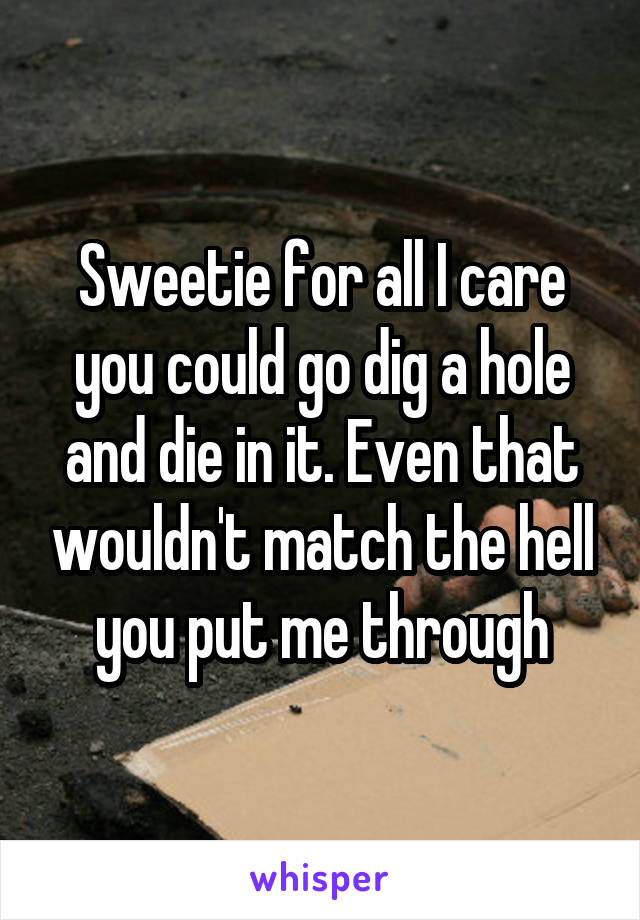 Sweetie for all I care you could go dig a hole and die in it. Even that wouldn't match the hell you put me through