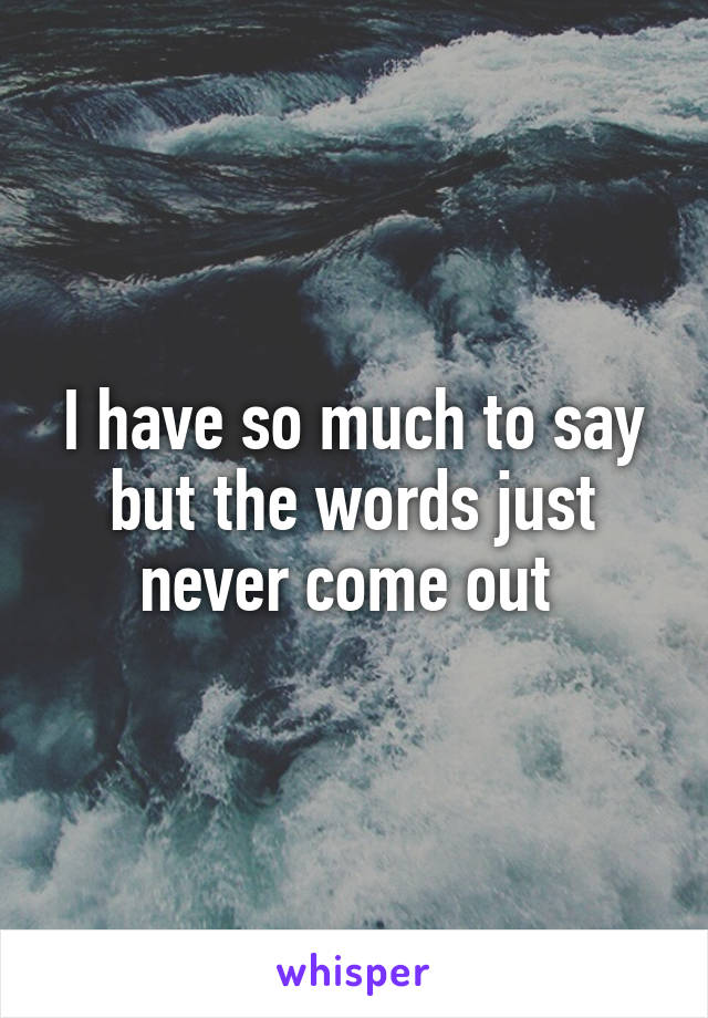 I have so much to say but the words just never come out