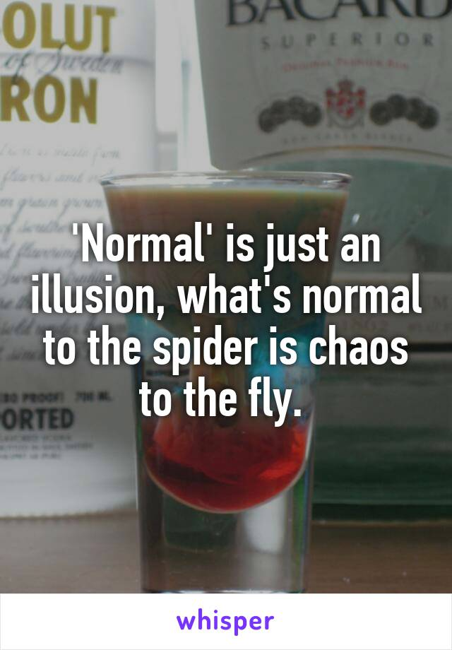 'Normal' is just an illusion, what's normal to the spider is chaos to the fly.
