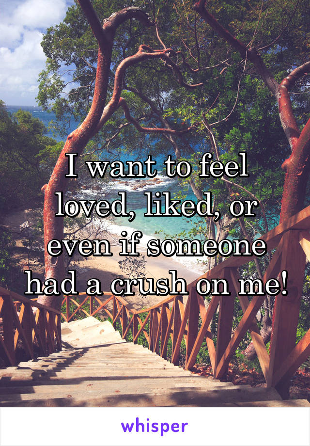 I want to feel loved, liked, or even if someone had a crush on me!