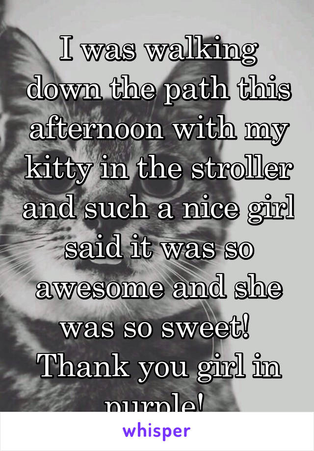 I was walking down the path this afternoon with my kitty in the stroller and such a nice girl said it was so awesome and she was so sweet!  Thank you girl in purple!