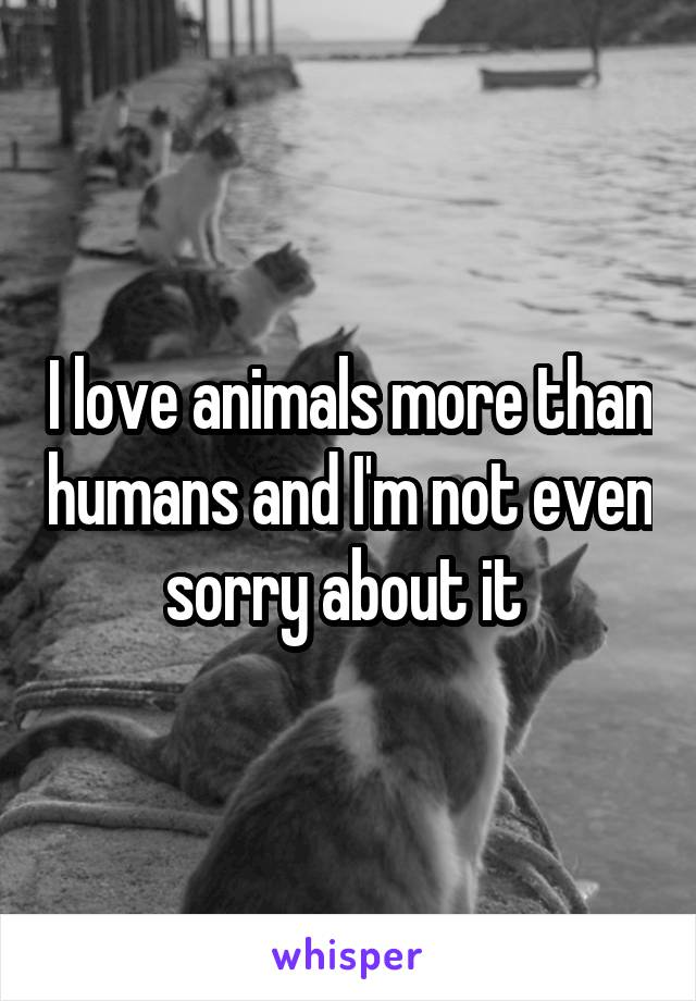I love animals more than humans and I'm not even sorry about it