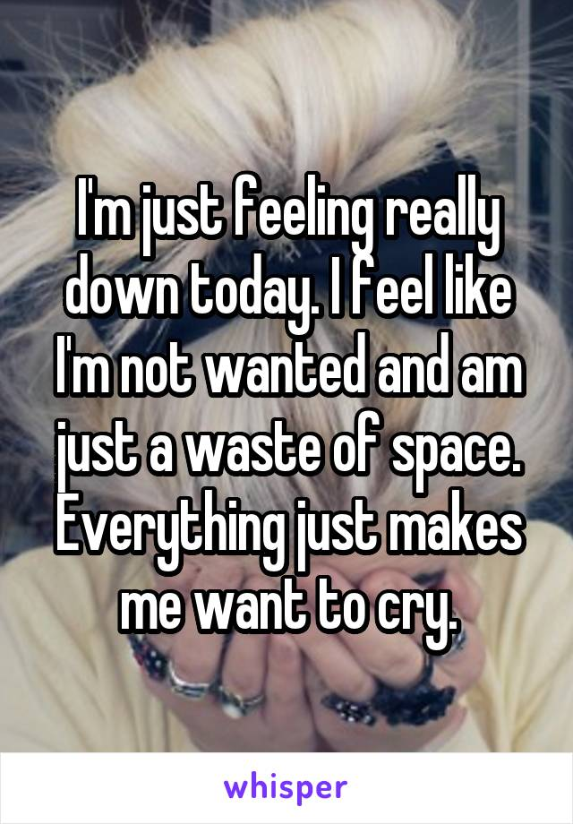 I'm just feeling really down today. I feel like I'm not wanted and am just a waste of space. Everything just makes me want to cry.