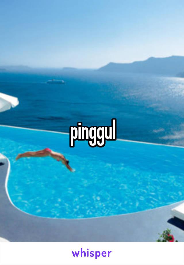 pinggul