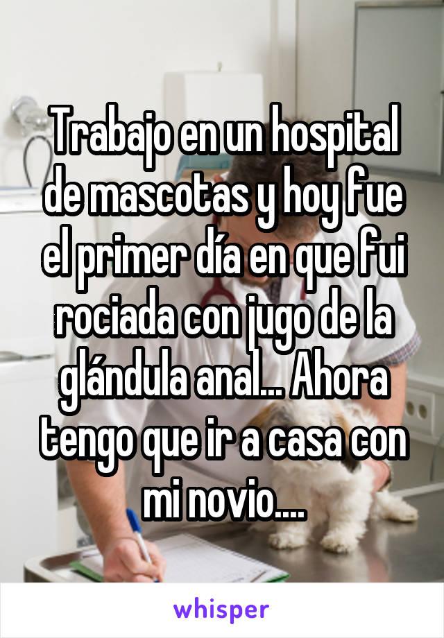 Trabajo en un hospital de mascotas y hoy fue el primer día en que fui rociada con jugo de la glándula anal... Ahora tengo que ir a casa con mi novio....