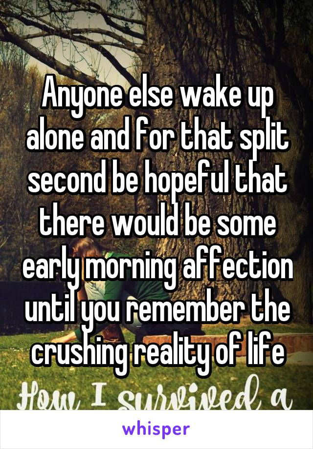 Anyone else wake up alone and for that split second be hopeful that there would be some early morning affection until you remember the crushing reality of life