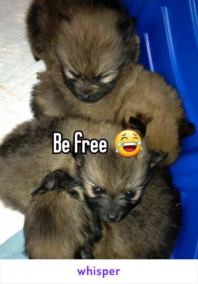 Be free 😂