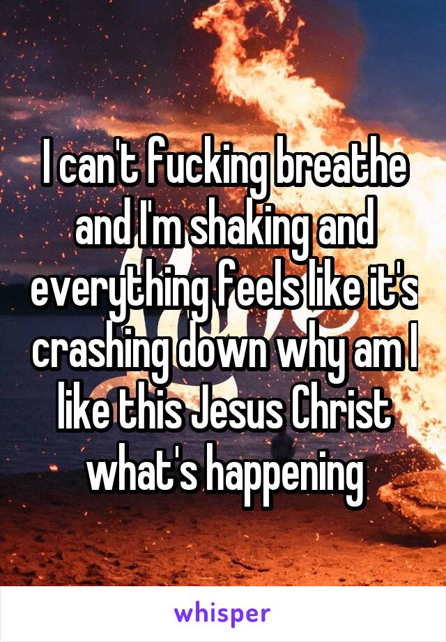I can't fucking breathe and I'm shaking and everything feels like it's crashing down why am I like this Jesus Christ what's happening
