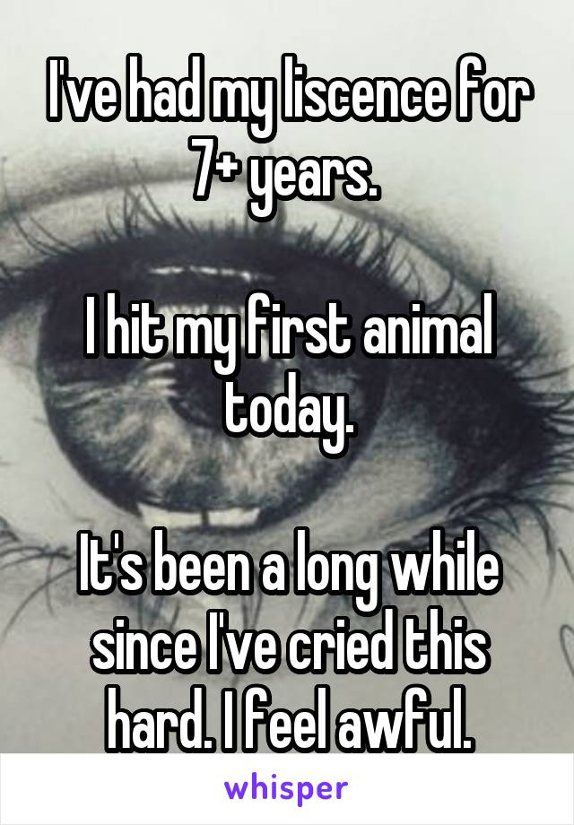 I've had my liscence for 7+ years.   I hit my first animal today.  It's been a long while since I've cried this hard. I feel awful.
