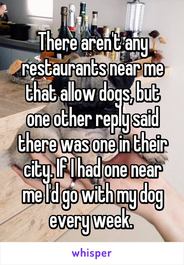 There Arent Any Restaurants Near Me That Allow Dogs But One Other