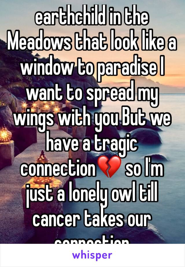 earthchild in the Meadows that look like a window to paradise I want to spread my wings with you But we have a tragic connection💔 so I'm just a lonely owl till cancer takes our connection