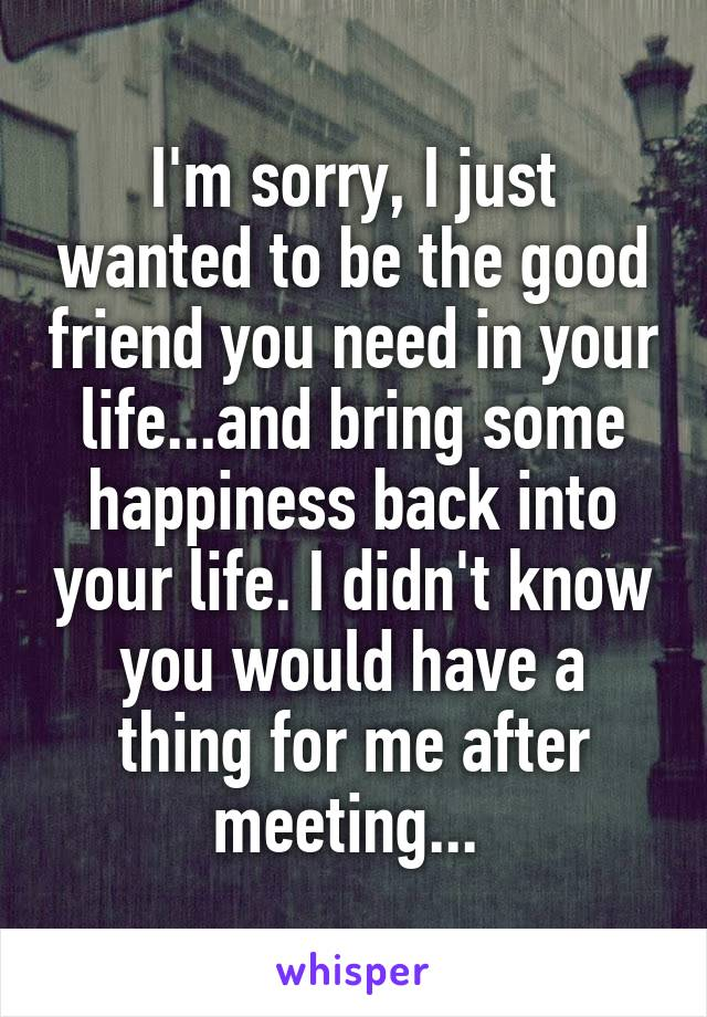 I'm sorry, I just wanted to be the good friend you need in your life...and bring some happiness back into your life. I didn't know you would have a thing for me after meeting...