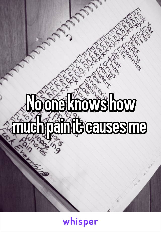 No one knows how much pain it causes me