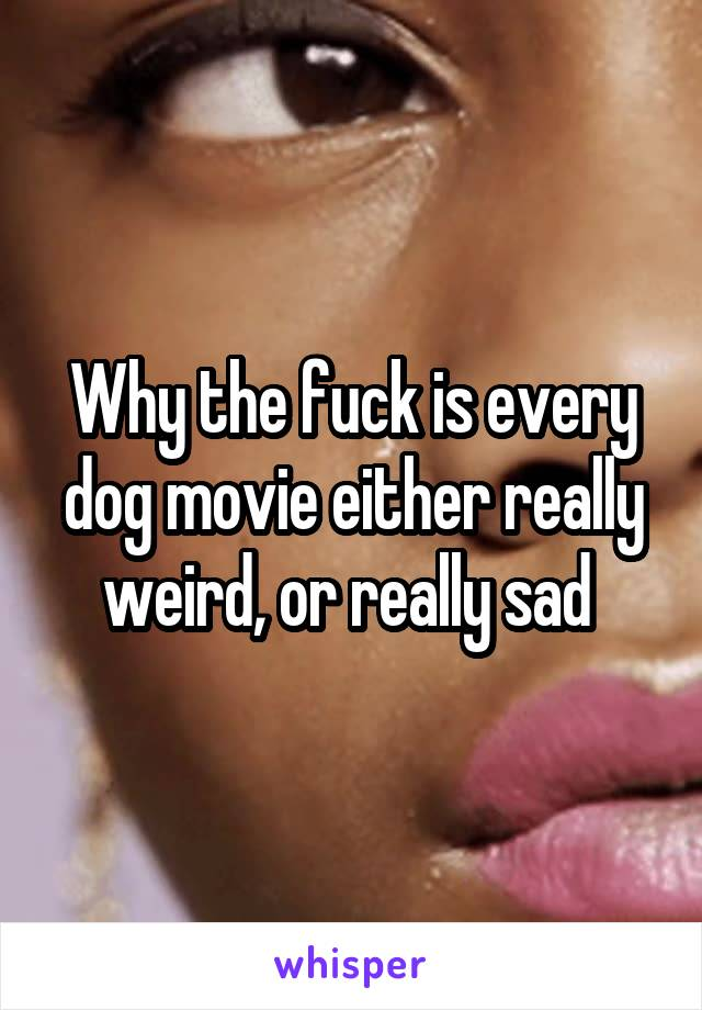 Why the fuck is every dog movie either really weird, or really sad