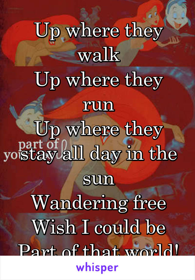 Up where they walk Up where they run Up where they stay all day in the sun Wandering free Wish I could be Part of that world!