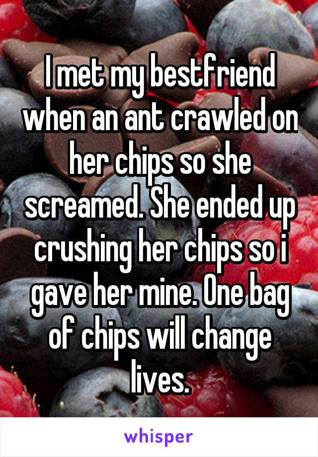 I met my bestfriend when an ant crawled on her chips so she screamed. She ended up crushing her chips so i gave her mine. One bag of chips will change lives.