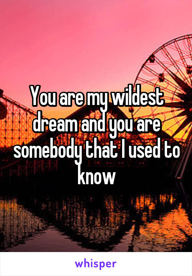 You are my wildest dream and you are somebody that I used to know