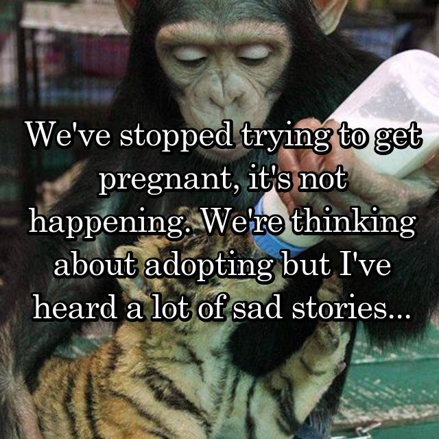 We've stopped trying to get pregnant, it's not happening. We're thinking about adopting but I've heard a lot of sad stories...