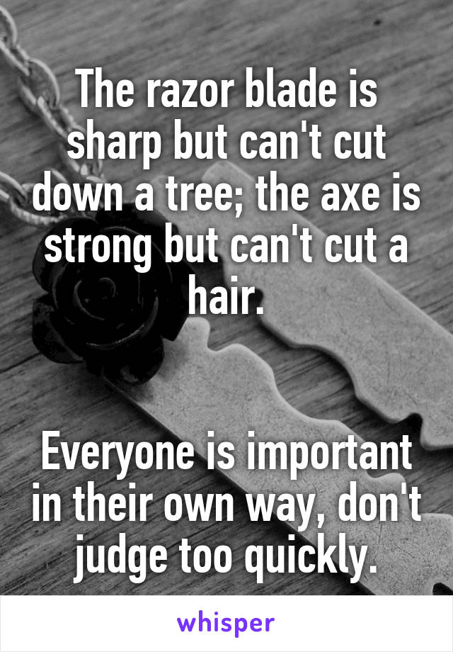 The razor blade is sharp but can't cut down a tree; the axe is strong but can't cut a hair.   Everyone is important in their own way, don't judge too quickly.