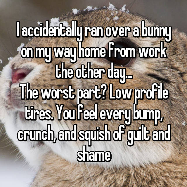 I accidentally ran over a bunny on my way home from work the other day... The worst part? Low profile tires. You feel every bump, crunch, and squish of guilt and shame