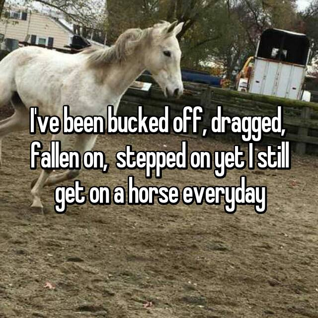 I've been bucked off, dragged,  fallen on,  stepped on yet I still get on a horse everyday