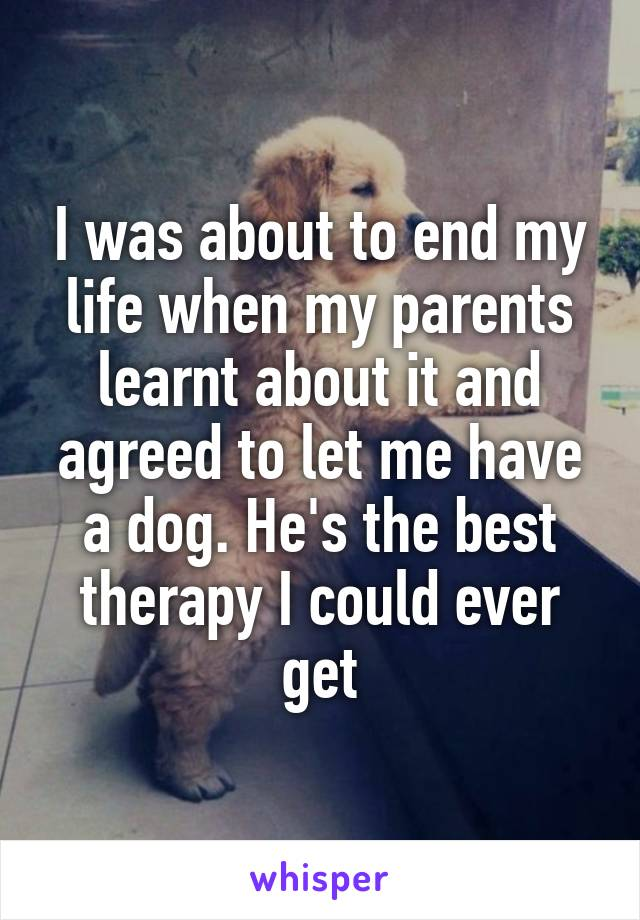 I was about to end my life when my parents learnt about it and agreed to let me have a dog. He's the best therapy I could ever get