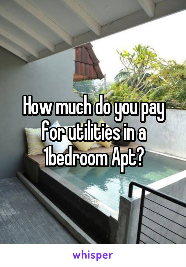 How much do you pay for utilities in a 1bedroom Apt?