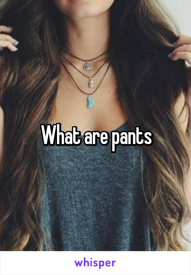 What are pants
