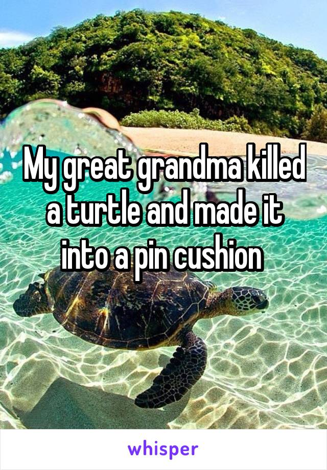 My great grandma killed a turtle and made it into a pin cushion