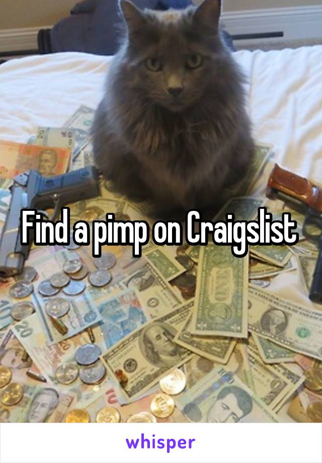 Find a pimp on Craigslist