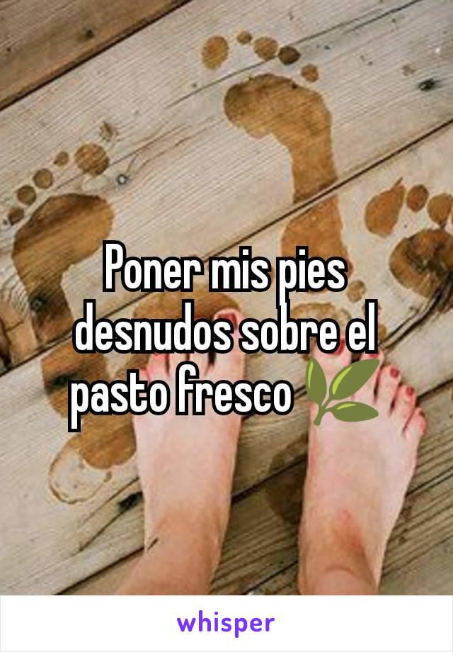 Poner mis pies desnudos sobre el pasto fresco 🌿