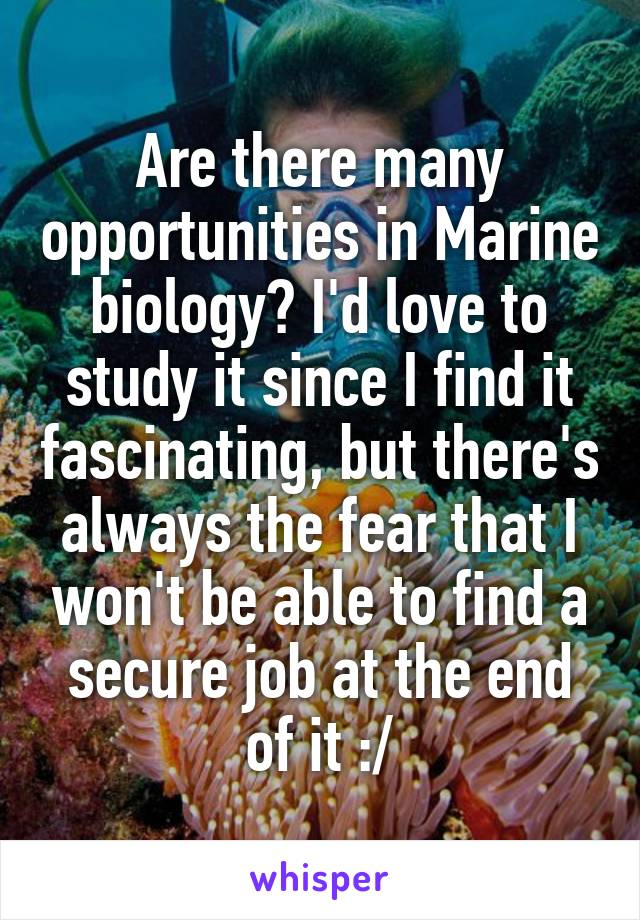 Are there many opportunities in Marine biology? I'd love to study it since I find it fascinating, but there's always the fear that I won't be able to find a secure job at the end of it :/