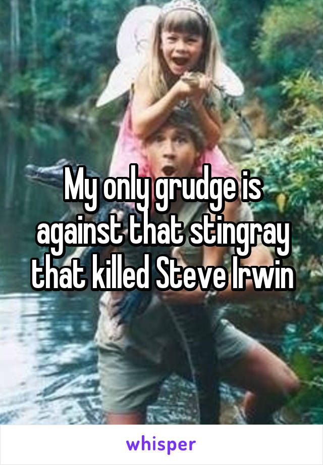 My only grudge is against that stingray that killed Steve Irwin