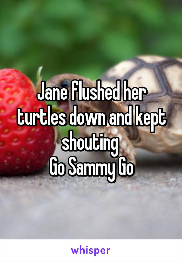 Jane flushed her turtles down and kept shouting  Go Sammy Go