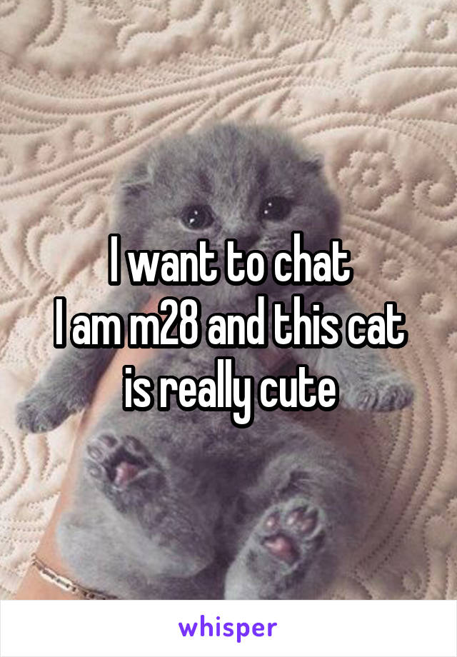 I want to chat I am m28 and this cat is really cute