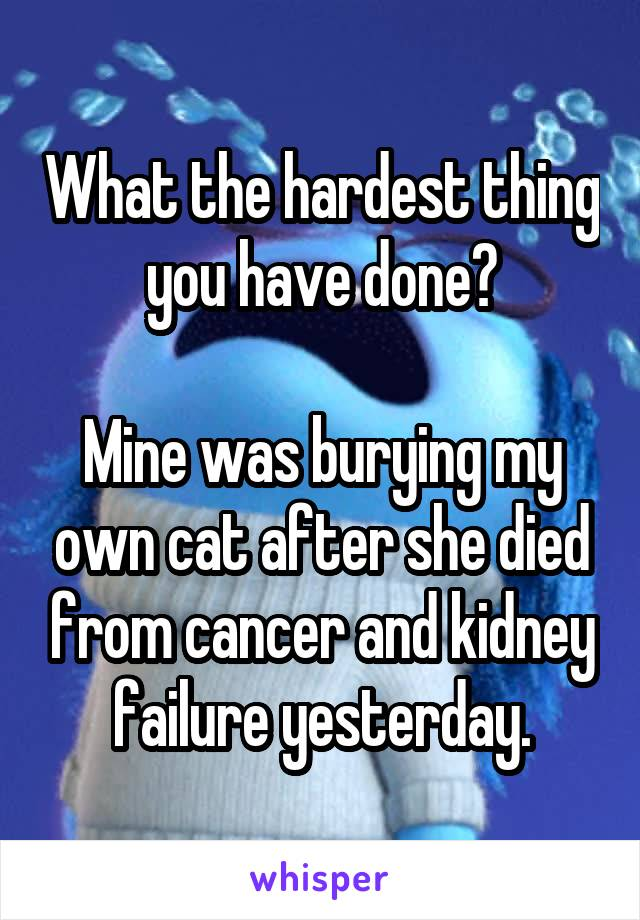 What the hardest thing you have done?  Mine was burying my own cat after she died from cancer and kidney failure yesterday.