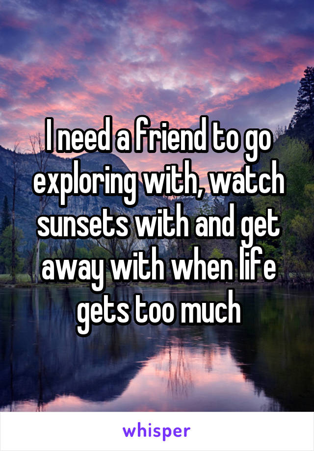 I need a friend to go exploring with, watch sunsets with and get away with when life gets too much