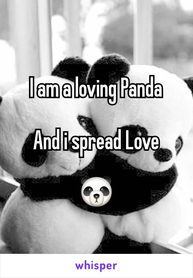 I am a loving Panda  And i spread Love  🐼