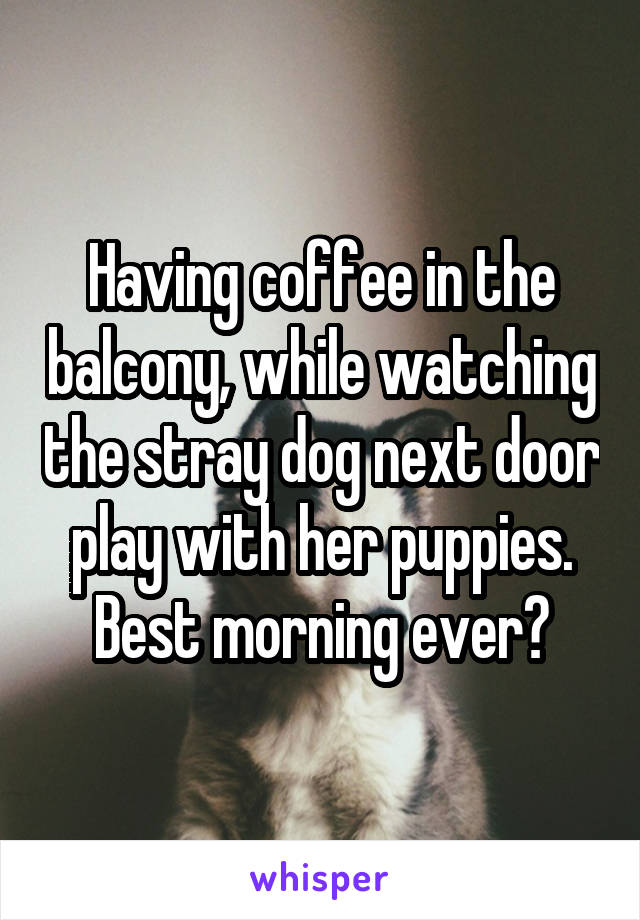 Having coffee in the balcony, while watching the stray dog next door play with her puppies. Best morning ever?