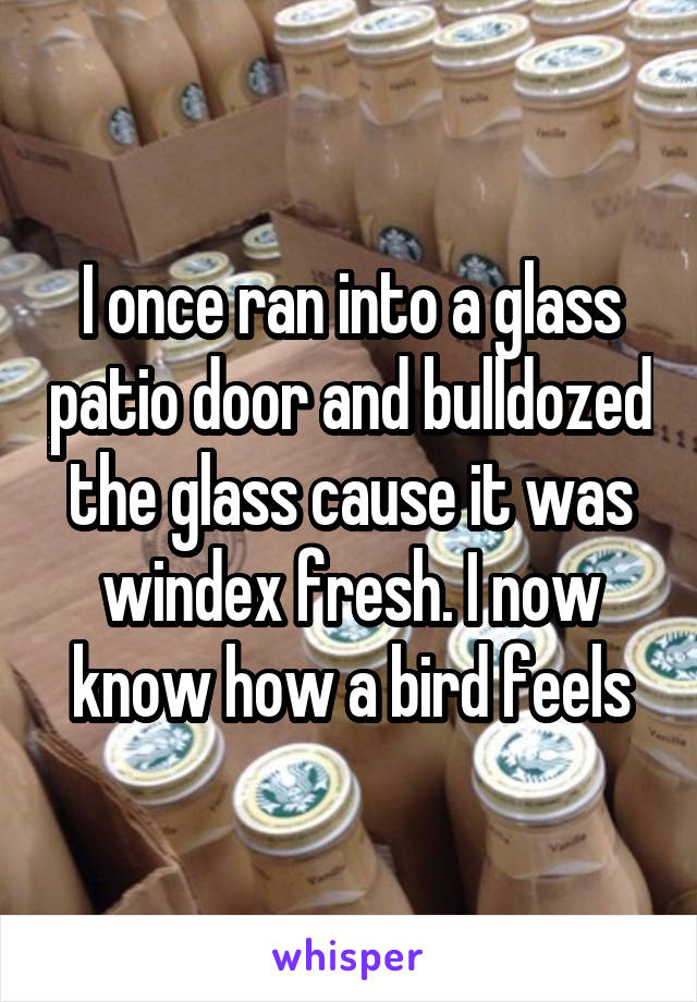 I once ran into a glass patio door and bulldozed the glass cause it was windex fresh. I now know how a bird feels