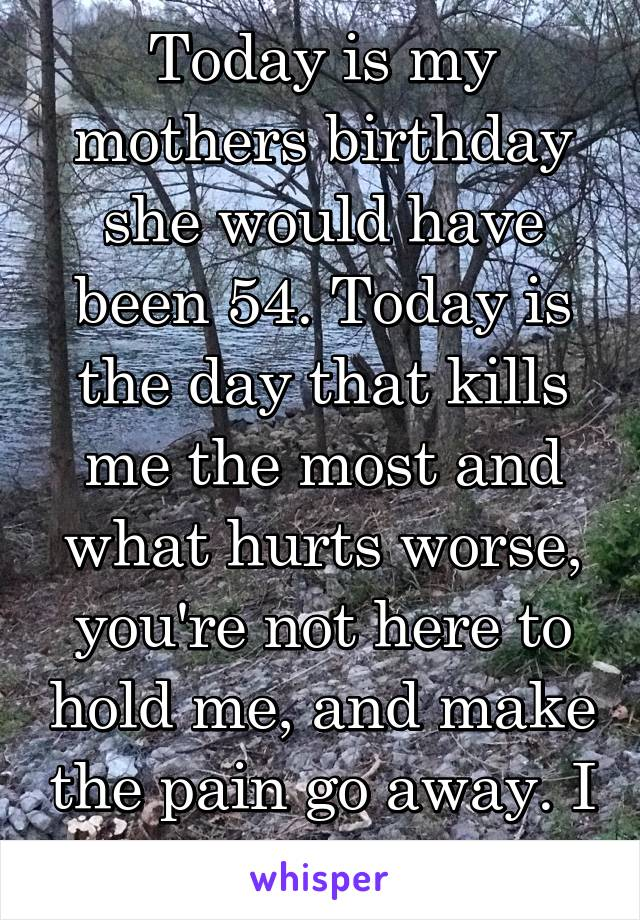 Today is my mothers birthday she would have been 54. Today is the day that kills me the most and what hurts worse, you're not here to hold me, and make the pain go away. I LOVE YOU TDY