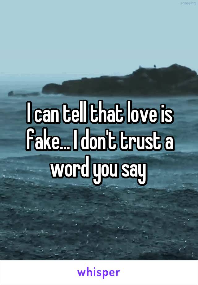 I can tell that love is fake... I don't trust a word you say