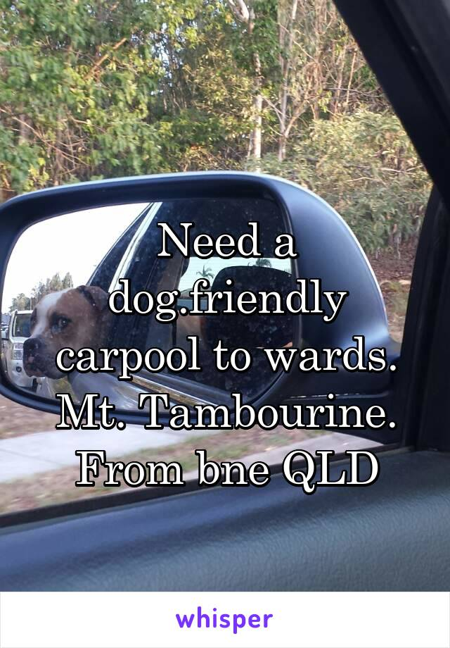 Need a dog.friendly carpool to wards. Mt. Tambourine. From bne QLD