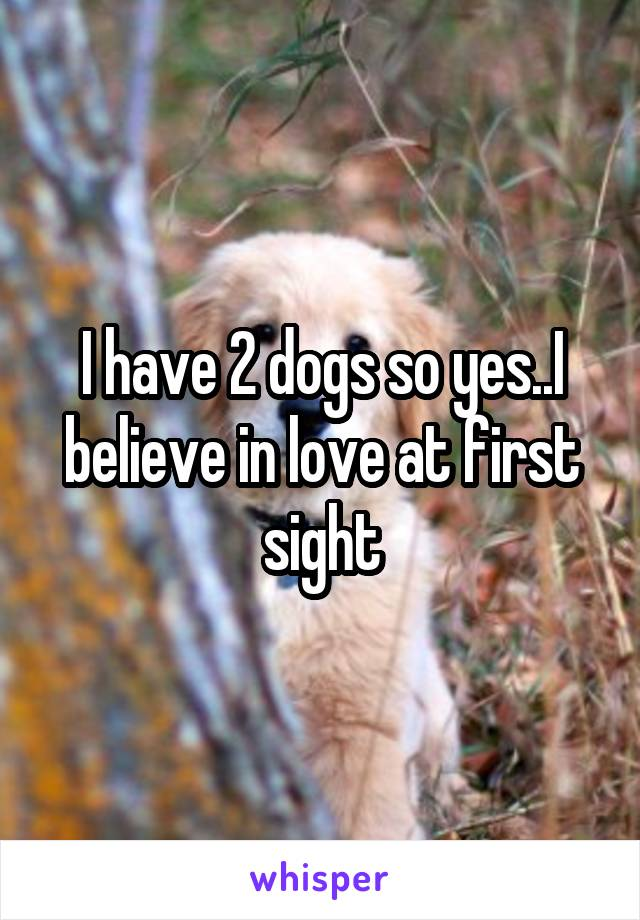 I have 2 dogs so yes..I believe in love at first sight