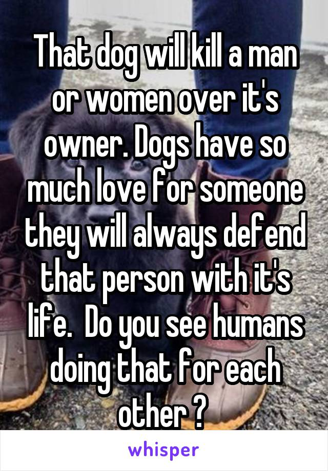 That dog will kill a man or women over it's owner. Dogs have so much love for someone they will always defend that person with it's life.  Do you see humans doing that for each other ?