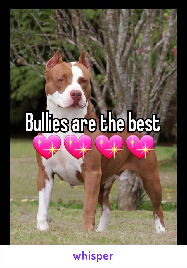 Bullies are the best 💖💖💖💖