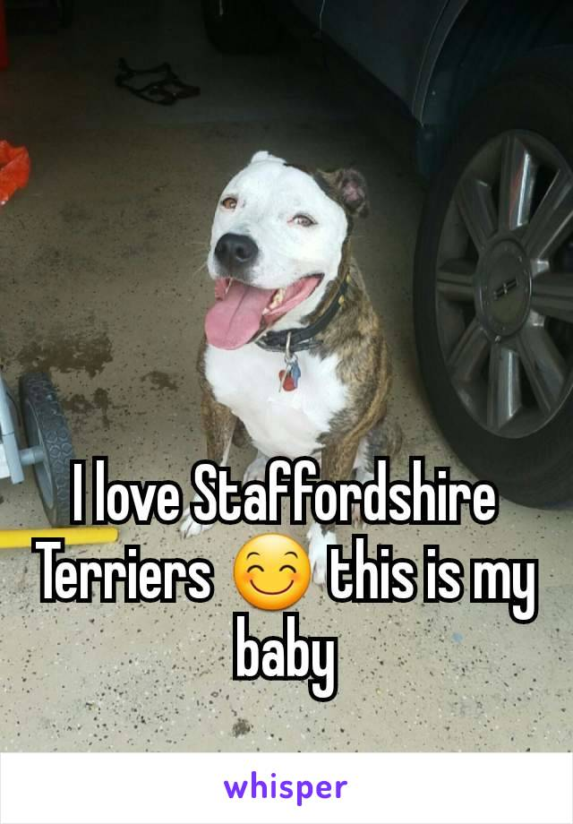 I love Staffordshire Terriers 😊 this is my baby