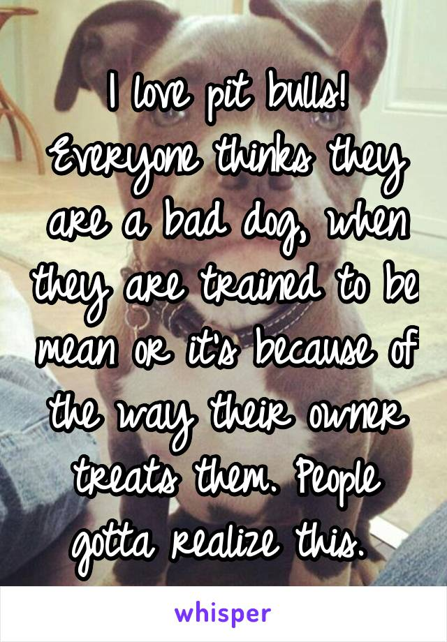 I love pit bulls! Everyone thinks they are a bad dog, when they are trained to be mean or it's because of the way their owner treats them. People gotta realize this.