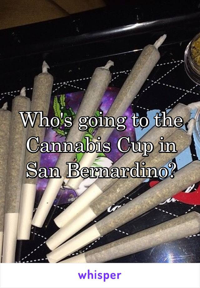 Who's going to the Cannabis Cup in San Bernardino?